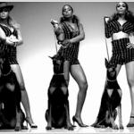 Nowe albumy Beyoncé